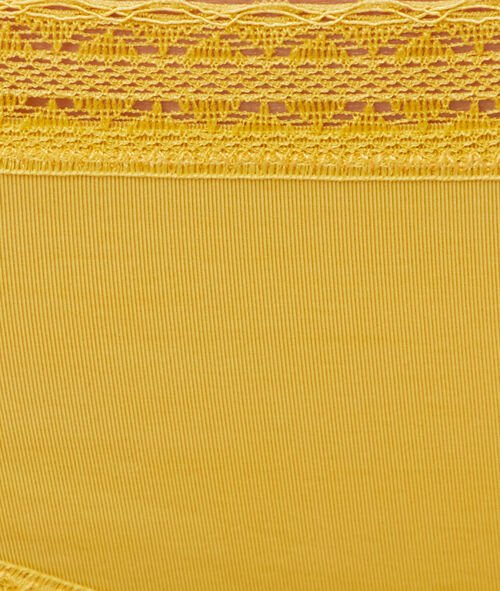 Braguita brasileña dos texturas
